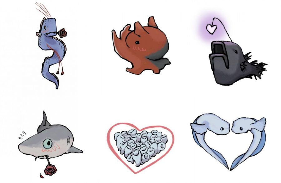 What Deep Sea Creature Is Right For You?
